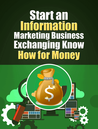 starting a information business plr report