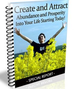 abundance and prosperity plr
