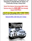 kaizen-advantage-ebook-and-videos-downsell