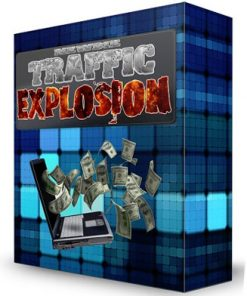 newbie website traffic explosion plr videos