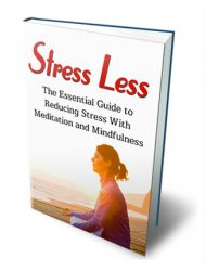 stress less ebook stress less ebook Stress Less Ebook with Master Resale Rights stress less ebook 190x250