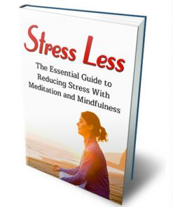 stress less ebook