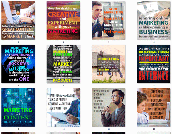 internet marketing for newbies ebook and videos