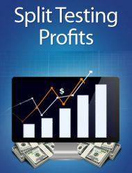 split testing profits plr ebook