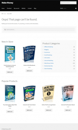 Make Money Online Ebook Store PLR Package