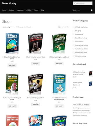 Make Money Online Ebook Store PLR Package