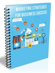 marketing strategies for business success plr report