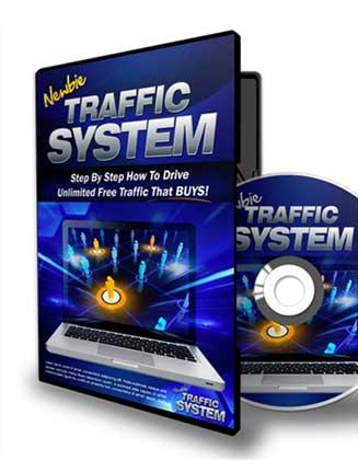 Newbie Traffic System PLR Videos