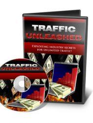 website traffic unleashed videos