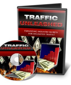 website traffic unleashed videos