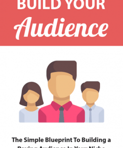 Build Your Online Audience Ebook MRR