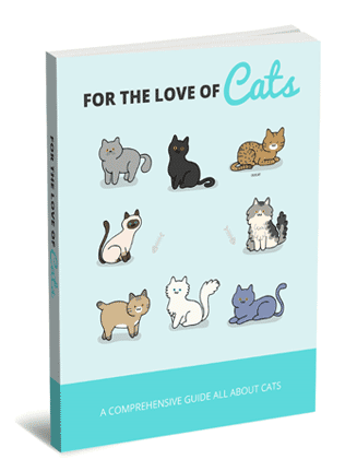 Love Of Cats PLR Report with Private Label Rights