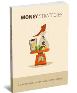 Money Strategies PLR Report with Private Label Rights