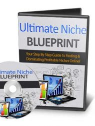 Ultimate Niche Marketing Blueprint Ebook and Videos MRR