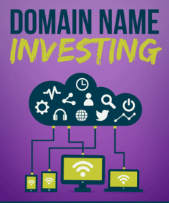 Domain Name Investing Ebook