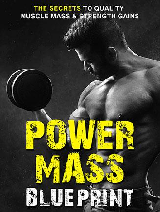 Power Mass Muscle Blueprint Ebook and Videos MRR