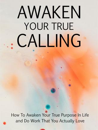 Awaken Your True Calling Ebook and Videos MRR