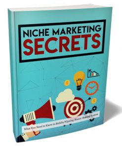 Niche Marketing Secrets Ebook and Videos MRR Package