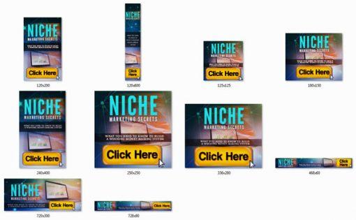 Niche Marketing Secrets Ebook and Videos MRR Package