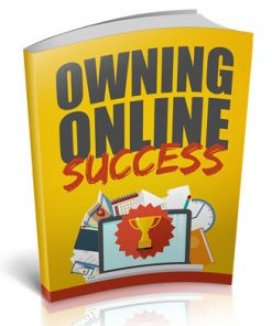 Owning Online Success Ebook with Master Resale Rights