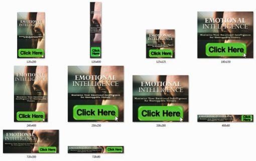Emotional Intelligence Ebook and Videos MRR