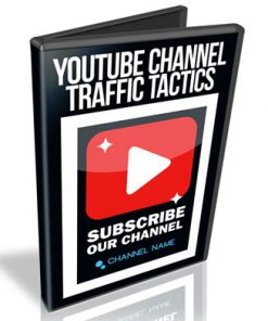 Youtube Channel Traffic Tactics PLR Videos