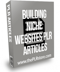 Building Niche Website PLR Articles