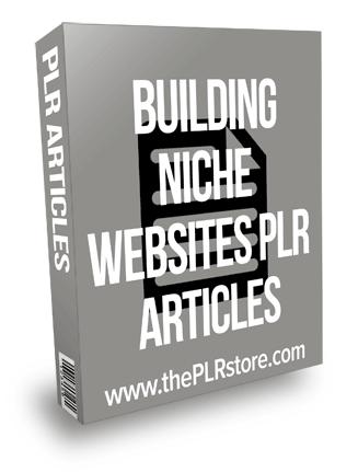 Building Niche Website PLR Articles