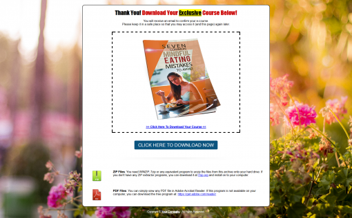 Mindful Eating PLR List Building Report