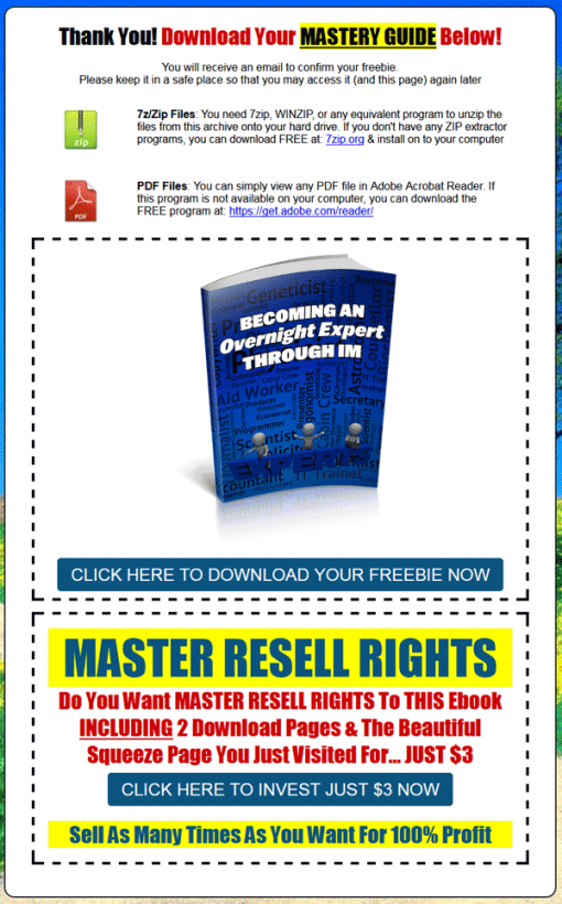 Becoming An Overnight IM Expert Ebook MRR