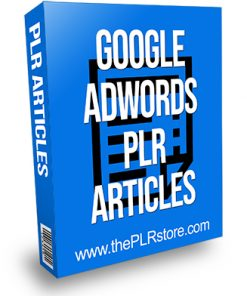 Google Adwords PLR Articles