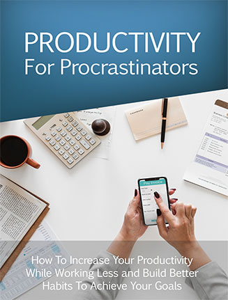 Productivity for Procrastinators Ebook and Videos MRR