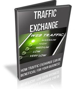 Traffic Exchanges PLR Videos