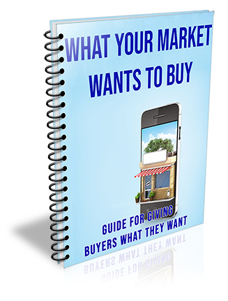 What Your Market Wants to Buy PLR Audio