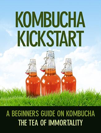 Kombucha Kickstart Ebook and Videos MRR