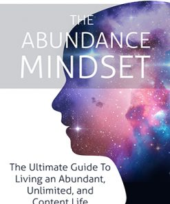 Abundance Mindset Ebook and Videos MRR