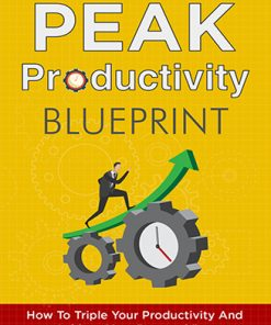 Peak Productivity Ebook and Videos MRR