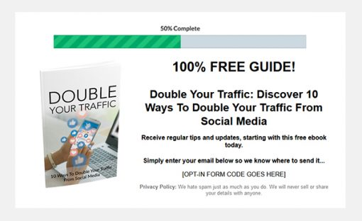 Double Your Traffic from Social Media Report MRR