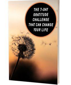 7 Day Gratitude Challenge Report MRR
