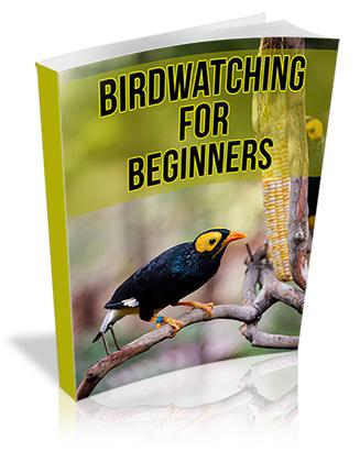 Birdwatching for Beginners PLR Report