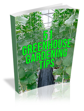 Greenhouse Growing Tips Report MRR