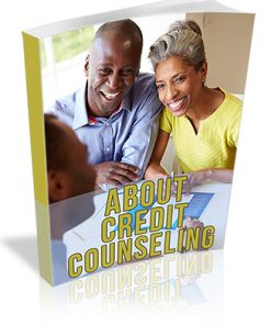 About Credit Counseling PLR Report