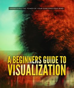 Beginner's Guide to Visualization Ebook and Videos MRR