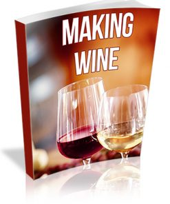 Making Wine PLR Report