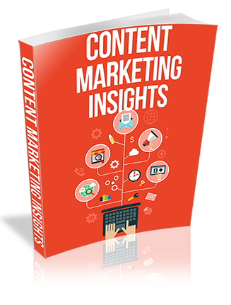 Content Marketing Insights PLR Report