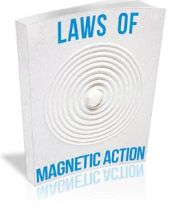 Laws of Magnetic Action PLR Report