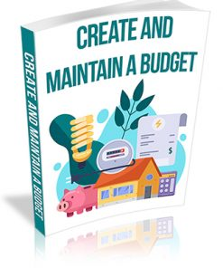 Create and Maintain a Budget PLR Report