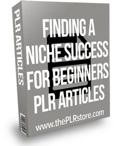Finding a Niche Success for Beginners PLR Articles