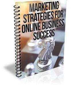 Marketing Strategies for Online Business Success PLR Report