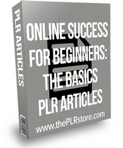 Online Success for Beginners: The Basics PLR Articles